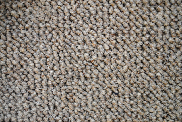 Wool Carpet (1)