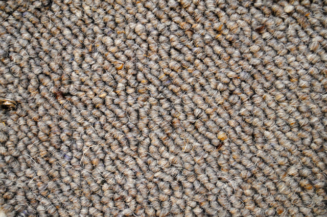 Wool Carpet (3)